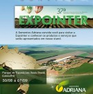 expointer-2014