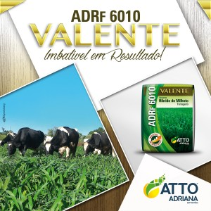 Post ADRF 6010 Valente