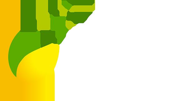 ATTO Adriana Sementes